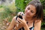 Ветеринарные аспекты содержания домашних хорьков
